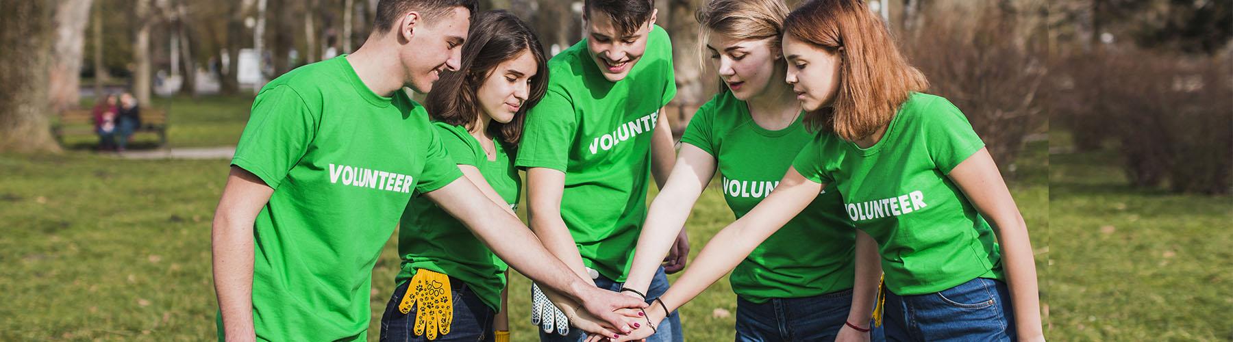 volontariato nel cv